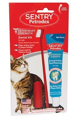 Для кошек выпускают специальную пасту, без резкого запаха и обильной пены