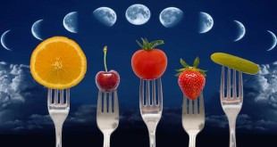 Фазы луны, овощи и фрукты на вилках