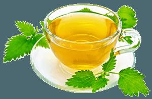 Чашка чая из крапивы