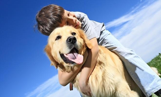 Мальчик сидит на собаке