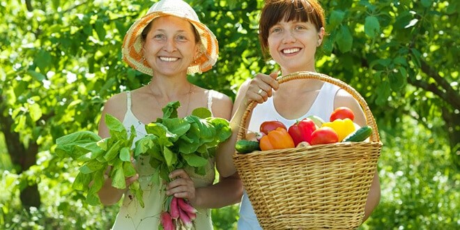 Женщины в огороде