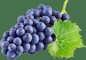 Виноград черный