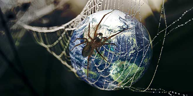 Земной шар в паутине