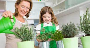 Женщина и девочка поливают растения