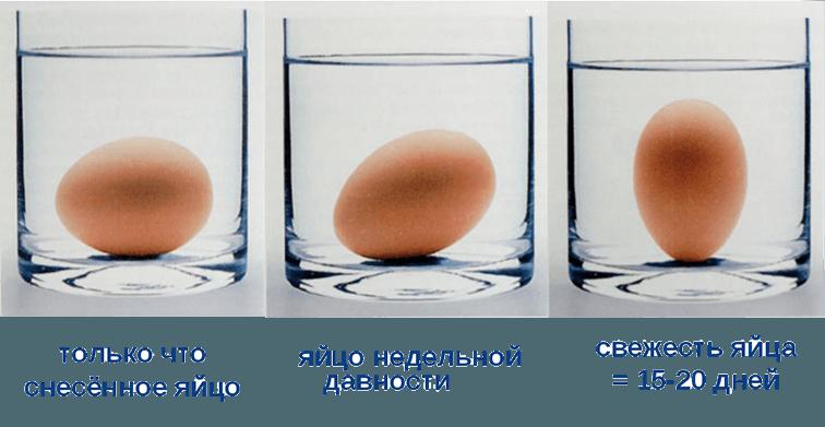 Три стакана с водой и куриными яйцами
