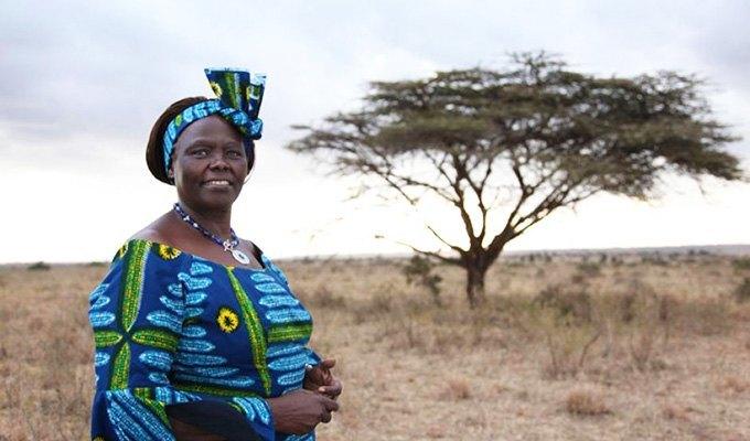 кенийский профессор Вангари Мута Маатаи