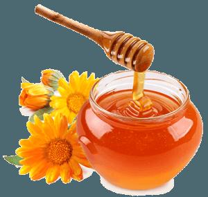 Мед и цветы колендулы