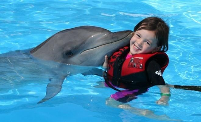 Девочка в воде с дельфином