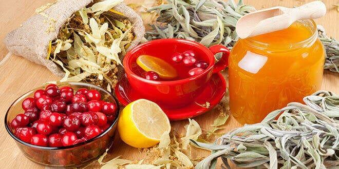 Травы, брусника, лимон, мед и чашка чая